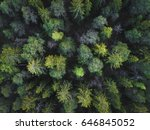 aerial view of green boreal...   Shutterstock . vector #646845052