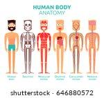 human body cartoon stylized... | Shutterstock .eps vector #646880572