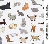 breeds of cats vector line... | Shutterstock .eps vector #646885852