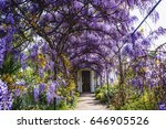 Arched Arbor Covered With...