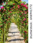 Stock photo rose arch in alhambra palace castle granada spain 646941772