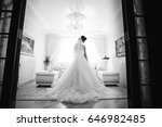 the charming bride stands in... | Shutterstock . vector #646982485