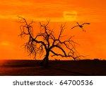 Dead Tree Against Sunlight Ove...