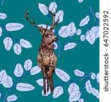 illustration of a hand deer on... | Shutterstock . vector #647022592