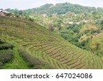 chiang rai  thailand   apr 22...   Shutterstock . vector #647024086