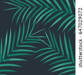 palm leaves. exotic palm leaves ... | Shutterstock .eps vector #647029072