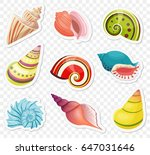 vector cartoon sea shells...