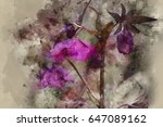 watercolour painting of purple... | Shutterstock . vector #647089162