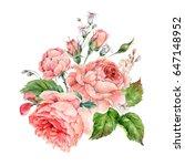beautiful vintage watercolor... | Shutterstock . vector #647148952