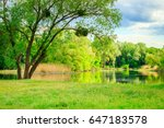 beautiful natural background by ...   Shutterstock . vector #647183578