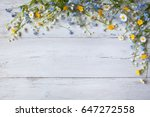 spring flowers of lilies of the ... | Shutterstock . vector #647272558