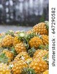 pineapple  | Shutterstock . vector #647290582