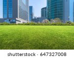 buildings and green lawn | Shutterstock . vector #647327008