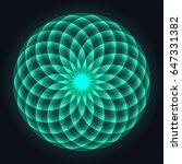 mandala design. flower of life. ... | Shutterstock .eps vector #647331382