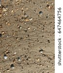 Sand  Rivulets  And Stones In...