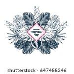 tropical summer background.... | Shutterstock .eps vector #647488246