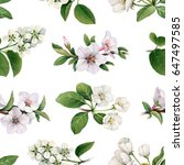 watercolor spring flowers. hand ... | Shutterstock . vector #647497585