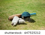 high angle view of cricket... | Shutterstock . vector #647525212