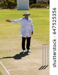 full length of cricket umpire...   Shutterstock . vector #647525356