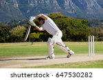 full length of cricketer... | Shutterstock . vector #647530282
