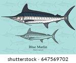 Blue Marlin  Squadron. Vector...