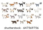 cats breeds  side view and... | Shutterstock .eps vector #647569756