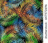 tropical pattern with palm... | Shutterstock .eps vector #647572696