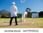 team playing cricket on pitch...   Shutterstock . vector #647595022