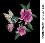 embroidery hummingbird and...   Shutterstock .eps vector #647664136