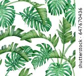 palm leaves and monstera.... | Shutterstock . vector #647670436