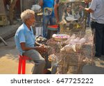 Small photo of Kolkata, India - May 21, 2017: A man selling live pigeon kept at a cage in the market.