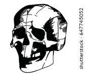 hand drawn anatomy skull with...   Shutterstock .eps vector #647745052