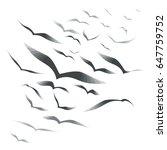 set birds in the sky  vector... | Shutterstock .eps vector #647759752