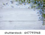 forget me not on a wooden...   Shutterstock . vector #647795968
