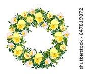 hand  drawn  graphic flower... | Shutterstock .eps vector #647819872