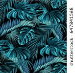 seamless pattern of tropical... | Shutterstock .eps vector #647841568