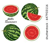 vector watermelon set isolated... | Shutterstock .eps vector #647933116