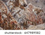 natural rock | Shutterstock . vector #647989582