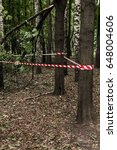 crime scene in forest lit by...   Shutterstock . vector #648004606