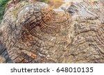 wood texture details | Shutterstock . vector #648010135