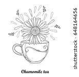 vector cup of chamomile herbal... | Shutterstock .eps vector #648164656