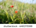 beautiful green spikelets shot... | Shutterstock . vector #648195088
