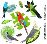 tropical leaves and parrots set  | Shutterstock .eps vector #648248812