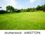 grassland landscape and... | Shutterstock . vector #648377296