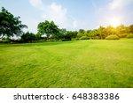 grassland landscape and... | Shutterstock . vector #648383386