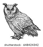 Stock vector owl illustration drawing engraving ink line art vector 648424342