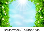 spring and summer branches with ... | Shutterstock .eps vector #648567736