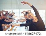 Cheerful Adult Female Ballet...