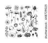 set of hand drawn doodle sketch ... | Shutterstock .eps vector #648729025