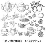 collection of tea leaves. green ... | Shutterstock .eps vector #648844426